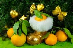Os mandarino ao lado da árvore de Natal Fotografia de Stock Royalty Free