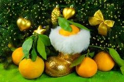 Os mandarino ao lado da árvore de Natal Fotos de Stock Royalty Free