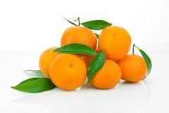 Os mandarino com folhas Imagem de Stock Royalty Free