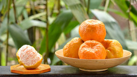 Os mandarino de Ponkan Foto de Stock