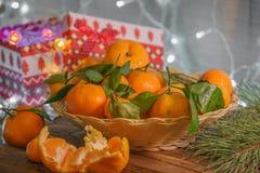 Os mandarino no tempo do Natal Foto de Stock