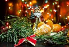Os mandarino nos ramos de um pinho e de uma festão do Natal Imagens de Stock Royalty Free