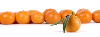 Os mandarino, um com folhas Imagens de Stock Royalty Free