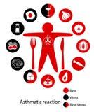 Os melhores e alimentos os mais maus para seus pulmões Foto de Stock