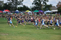 Os meninos da High School começam a raça do país transversal Fotos de Stock Royalty Free