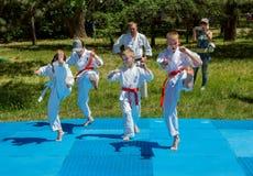 Os meninos participam no treinamento do karaté do ar livre fotografia de stock royalty free