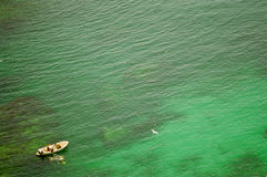 Os mergulhadores no verde vêem. Imagem de Stock