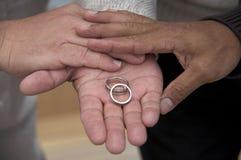 Os mesmos anéis da união do sexo Fotos de Stock