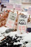 Os mexilhões locais frescos assinam no mercado Fotografia de Stock
