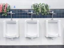 Os mictórios cerâmicos brancos não limpos para homens com flor decoram Imagem de Stock