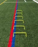 Os mini obstáculos amarelos da agilidade em um relvado verde colocam Foto de Stock