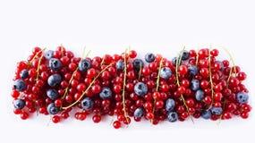 Os mirtilos maduros e os corintos vermelhos mint em um branco Bagas vermelhas e azuis Fotos de Stock Royalty Free