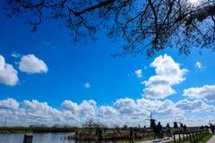 Os moinhos de Kinderdijk - Países Baixos imagem de stock royalty free