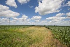 Os moinhos de vento aproximam o Fowler, Indiana Imagens de Stock
