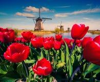 Os moinhos de vento holandeses famosos Fotografia de Stock Royalty Free
