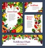 Os moldes do vetor para o jardim exótico frutificam bagas Imagens de Stock Royalty Free