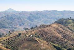 Os montes da floresta úmida com desflorestamento para cultivar em Khao Kho, província de Phetchabun, Tailândia imagem de stock