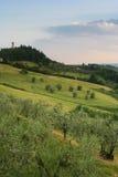 Os montes de Tuscan aproximam Tavarnelle Foto de Stock