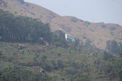 Os montes veem em Kerala - God& x27; s pr?prio pa?s imagens de stock royalty free