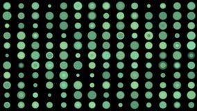 os mosaicos doces da matriz da disposição do ponto do círculo 4k, fazem a varredura dos dados grandes que classificam o gene da a ilustração stock