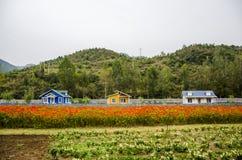 Os mounains, a floresta e a cabine Fotos de Stock
