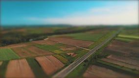 Os movimentos da vista aérea abaixam do céu etéreo às jardas bonitas e aos campos coloridos vídeos de arquivo