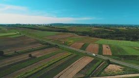 Os movimentos da vista aérea abaixam do céu etéreo às jardas bonitas e aos campos coloridos video estoque