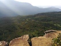 Os mundos pequenos terminam na natureza bonita em Sri Lanka fotos de stock royalty free