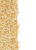 Os núcleos crus, naturais, crus da semente do trigo mourisco limitam o quadro Imagem de Stock