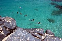 Os nadadores e a tartaruga de mar nas águas claros de Waimea latem, Oahu, Havaí Imagem de Stock