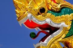 Os naga semi divinos míticos dirigem com bola verde Imagem de Stock