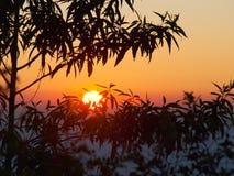 Os nasceres do sol no norte de Tailândia Fotografia de Stock
