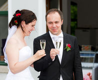 Os Newlyweds comemoram lá wedding imagens de stock royalty free