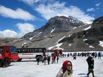 Os ônibus de turistas e os turistas na neve abobadam a geleira, Canadá Imagens de Stock