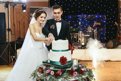 Os noivos bonitos cortaram o bolo de casamento na primeira vez Fotografia de Stock Royalty Free