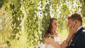 Os noivos bonitos e felizes sob os ramos das árvores de vidoeiro exultam junto Mãos tocantes video estoque