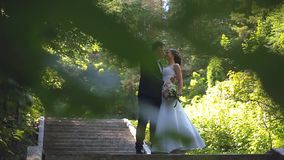 Os noivos estão andando ao longo da aleia do parque vídeos de arquivo