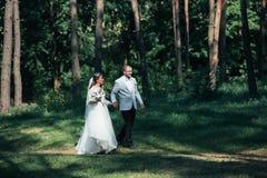 Os noivos estão andando nas madeiras em seu dia do casamento foto de stock