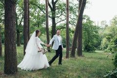 Os noivos est?o andando nas madeiras em seu dia do casamento fotos de stock