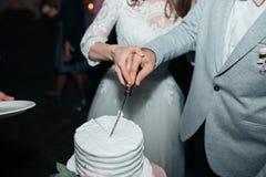 Os noivos no corte do partido e para tentar o bolo de casamento imagem de stock royalty free