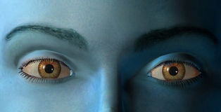 Os olhos ilustração do vetor