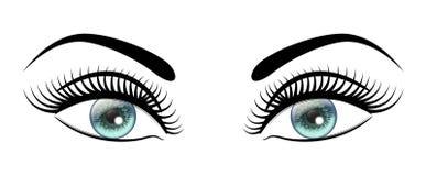 Os olhos azuis abertos bonitos com preto longo chicoteiam o olhar feminino distintivo ilustração do vetor