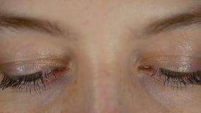 Os olhos da mulher bonita nova olham para baixo, livro de leitura, mensagem do smarphone vídeos de arquivo