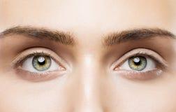 Os olhos da mulher fecham-se acima, composição natural, cara da beleza da moça, olho Fotografia de Stock Royalty Free