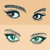 Os olhos das mulheres verdes e marrons Foto de Stock Royalty Free