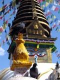 Os olhos de Buda Foto de Stock