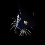 Os olhos de gato ilustração stock