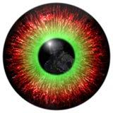 Os olhos do zombi com a reflexão dirigiram o soldado Eyes o assassino Contato de olho mortal Olho animal com a íris colorida cont ilustração stock