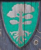 osłona Viking Zdjęcie Stock