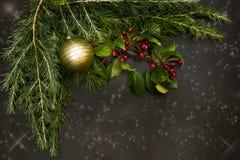 Os ornamento do Natal com as bagas vermelhas pequenas, as bolas brilhantes, velas vermelhas e um pinho ramificam fotos de stock royalty free
